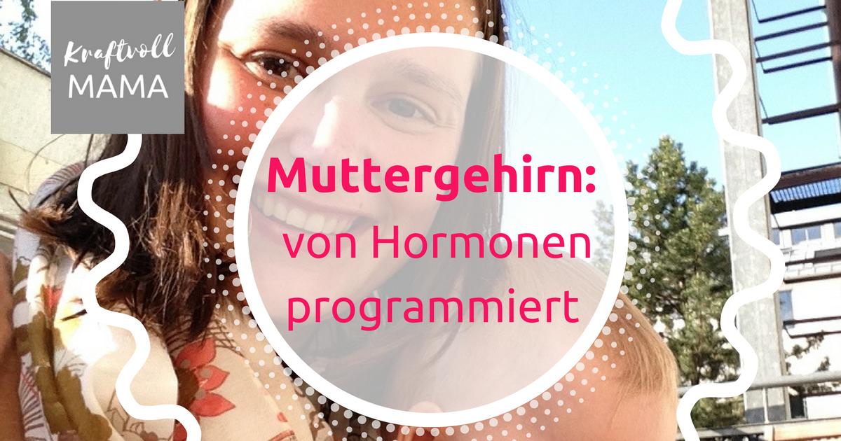 Von Hormonen programmiert